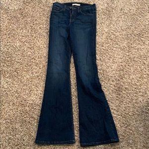 Flying Monkey Flare Jeans
